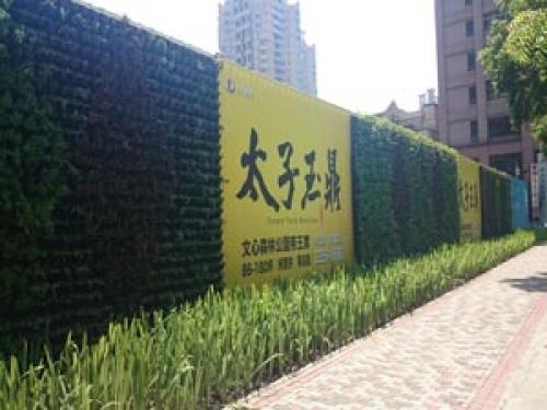 綠圍籬植生牆